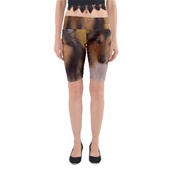Shetland Sheepdog Yoga Cropped Leggings