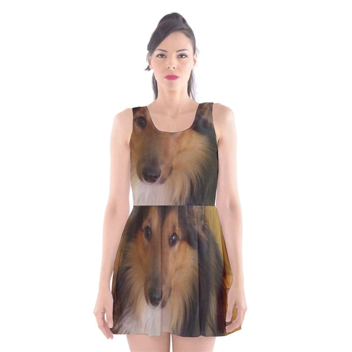 Shetland Sheepdog Scoop Neck Skater Dress