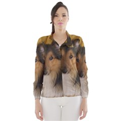Shetland Sheepdog Wind Breaker (Women)