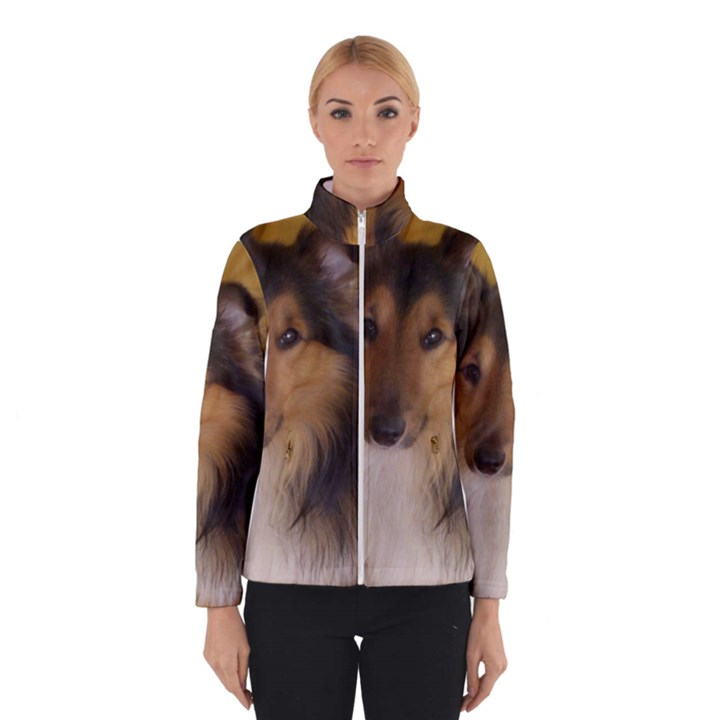 Shetland Sheepdog Winterwear