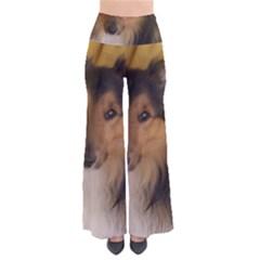 Shetland Sheepdog Pants