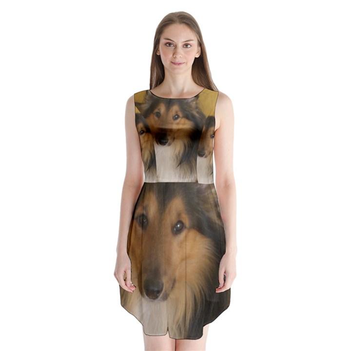 Shetland Sheepdog Sleeveless Chiffon Dress