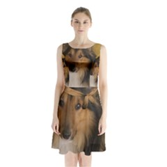 Shetland Sheepdog Sleeveless Chiffon Waist Tie Dress