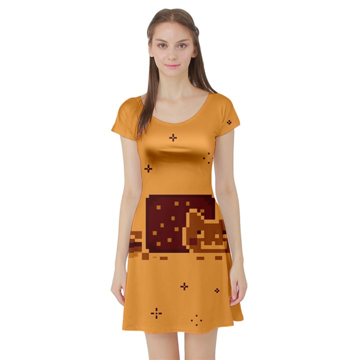 Nyan Cat Vintage Short Sleeve Skater Dress