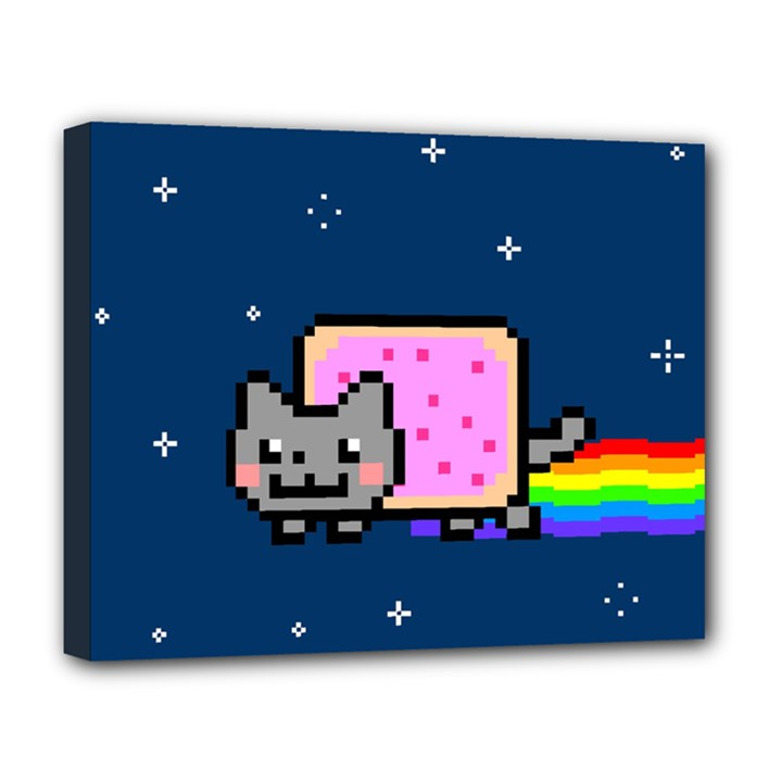 Nyan Cat Deluxe Canvas 20  x 16