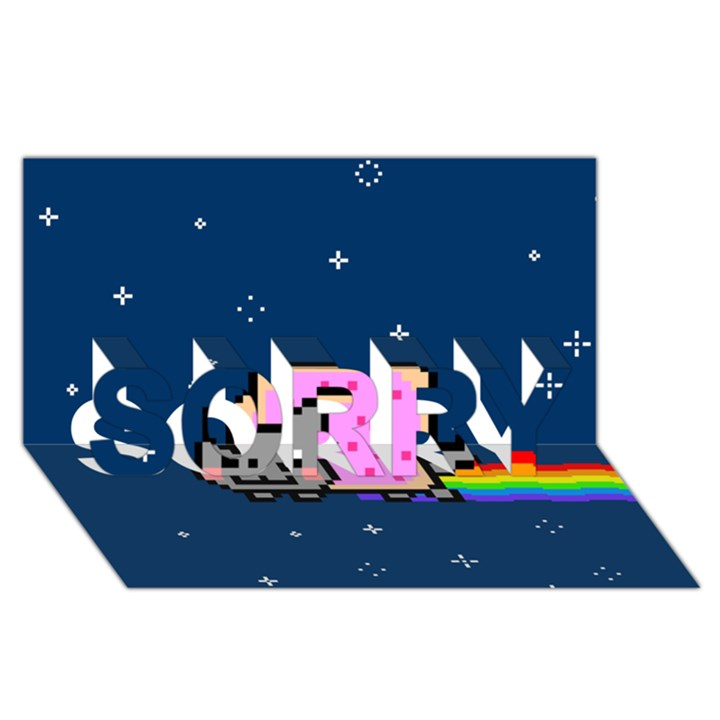 Nyan Cat SORRY 3D Greeting Card (8x4)