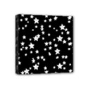 Black And White Starry Pattern Mini Canvas 4  x 4  View1