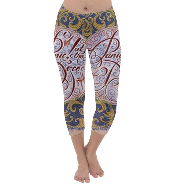 Panic! At The Disco Capri Winter Leggings