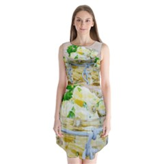 1 Kartoffelsalat Einmachglas 2 Sleeveless Chiffon Dress