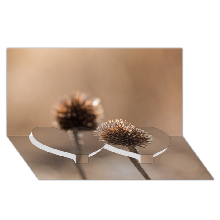 2  Verwelkte Kugeldistel Twin Heart Bottom 3D Greeting Card (8x4)