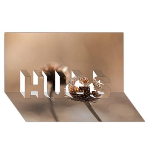 2  Verwelkte Kugeldistel HUGS 3D Greeting Card (8x4)