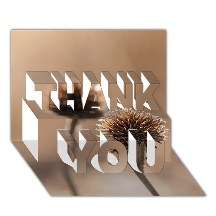 2  Verwelkte Kugeldistel THANK YOU 3D Greeting Card (7x5)