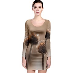 2  Verwelkte Kugeldistel Long Sleeve Bodycon Dress