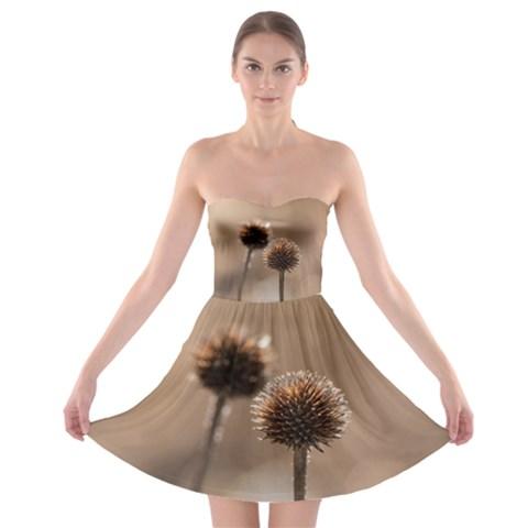 2  Verwelkte Kugeldistel Strapless Bra Top Dress