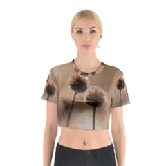 2  Verwelkte Kugeldistel Cotton Crop Top