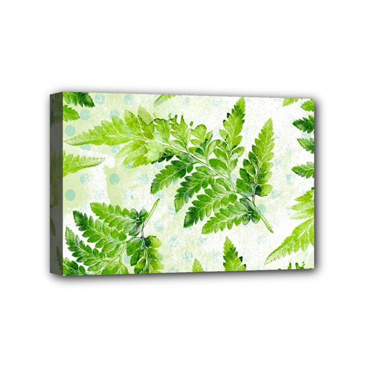 Fern Leaves Mini Canvas 6  x 4
