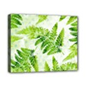 Fern Leaves Canvas 10  x 8  View1
