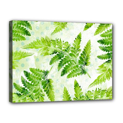 Fern Leaves Canvas 16  x 12
