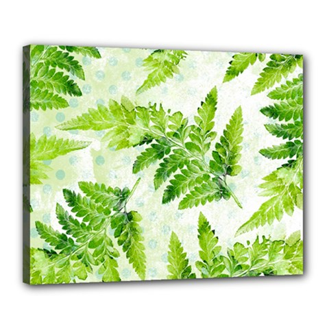 Fern Leaves Canvas 20  x 16