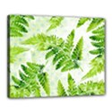 Fern Leaves Canvas 20  x 16  View1