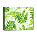 Fern Leaves Deluxe Canvas 16  x 12   View1