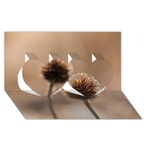 Withered Globe Thistle In Autumn Macro Twin Hearts 3D Greeting Card (8x4)