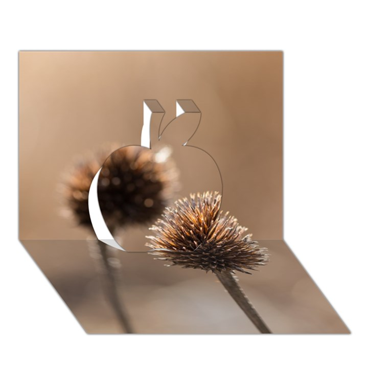 Withered Globe Thistle In Autumn Macro Apple 3D Greeting Card (7x5)