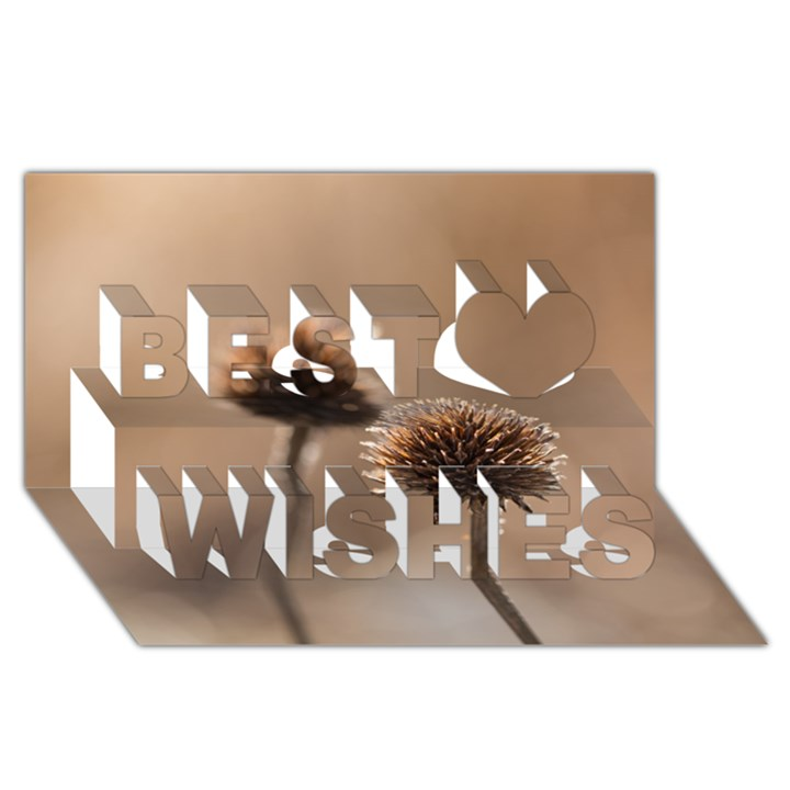 Withered Globe Thistle In Autumn Macro Best Wish 3D Greeting Card (8x4)