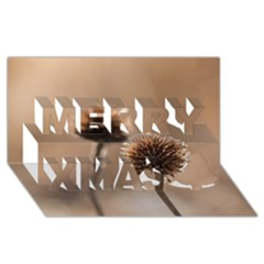 Withered Globe Thistle In Autumn Macro Merry Xmas 3d Greeting Card (8x4)