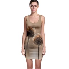 Withered Globe Thistle In Autumn Macro Sleeveless Bodycon Dress