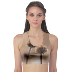 Withered Globe Thistle In Autumn Macro Sports Bra
