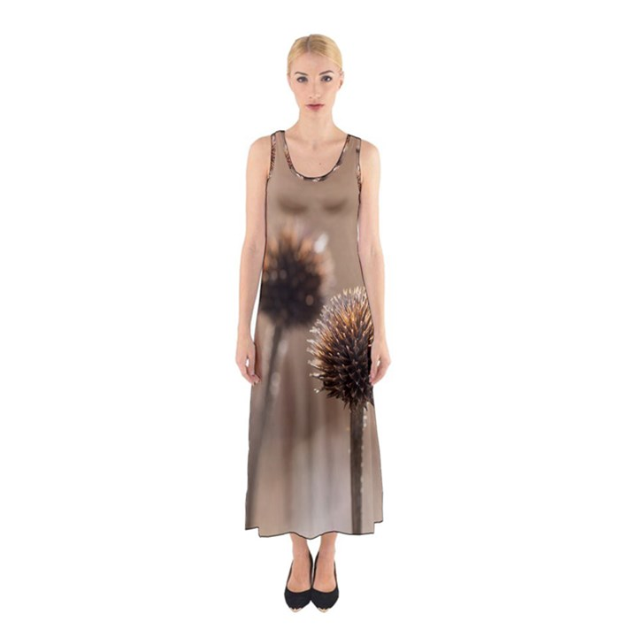 Withered Globe Thistle In Autumn Macro Sleeveless Maxi Dress
