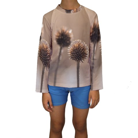 Withered Globe Thistle In Autumn Macro Kids  Long Sleeve Swimwear