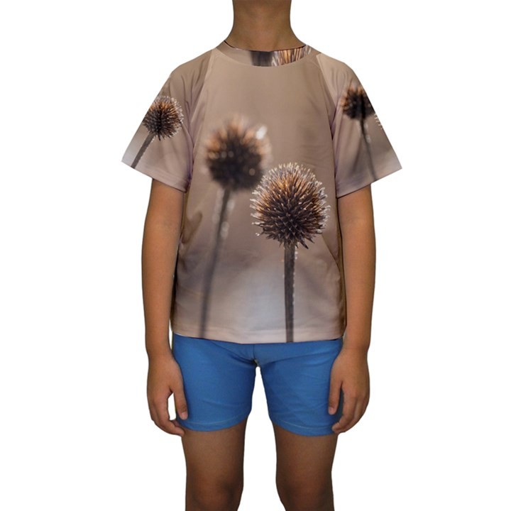 Withered Globe Thistle In Autumn Macro Kids  Short Sleeve Swimwear