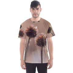Withered Globe Thistle In Autumn Macro Men s Sport Mesh Tee