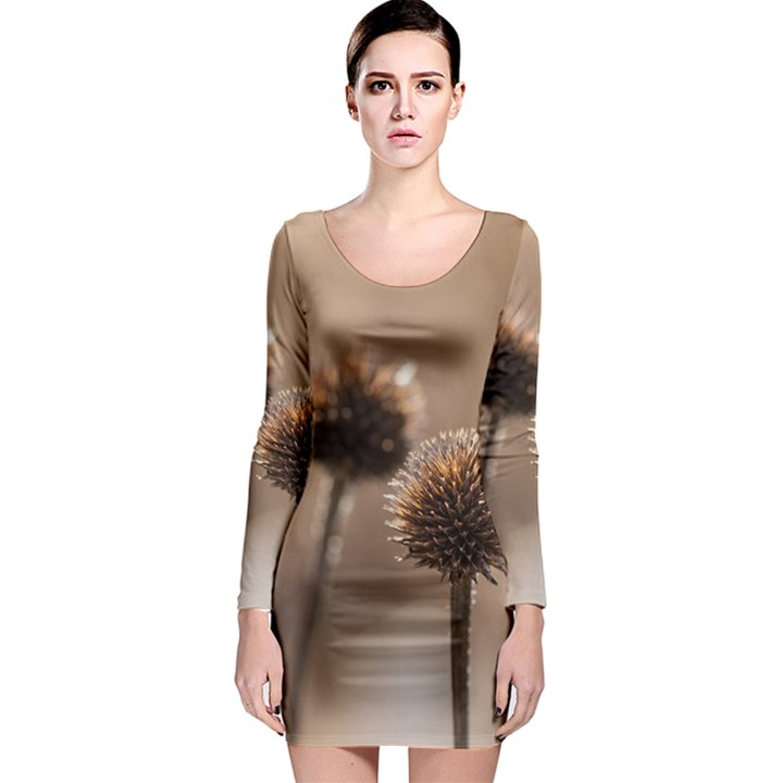 Withered Globe Thistle In Autumn Macro Long Sleeve Bodycon Dress