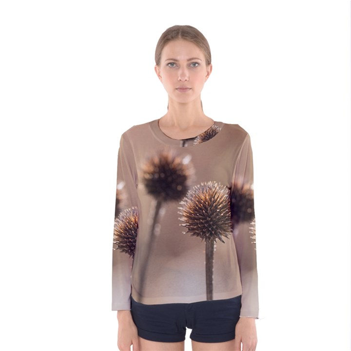 Withered Globe Thistle In Autumn Macro Women s Long Sleeve Tee