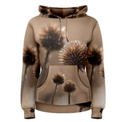 Withered Globe Thistle In Autumn Macro Women s Pullover Hoodie
