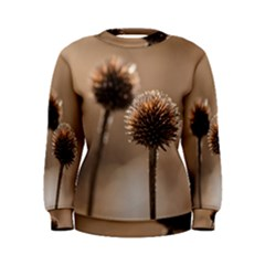 Withered Globe Thistle In Autumn Macro Women s Sweatshirt
