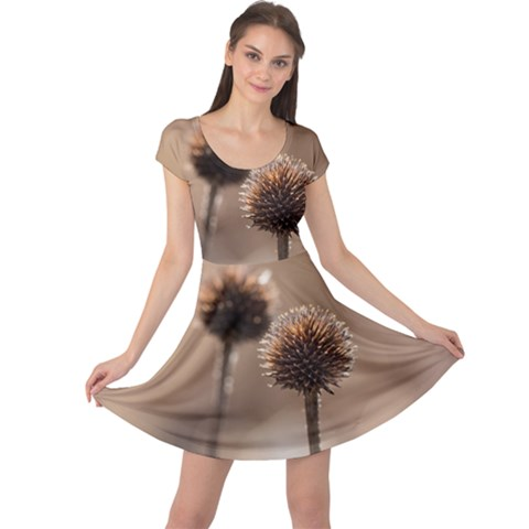 Withered Globe Thistle In Autumn Macro Cap Sleeve Dresses