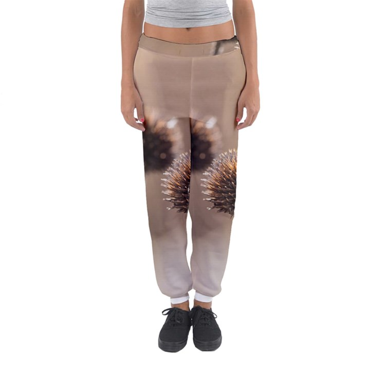 Withered Globe Thistle In Autumn Macro Women s Jogger Sweatpants