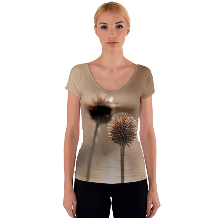 Withered Globe Thistle In Autumn Macro Women s V-Neck Cap Sleeve Top