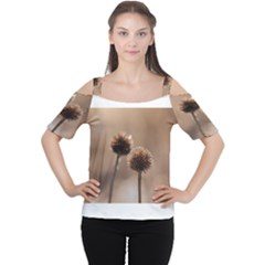 Withered Globe Thistle In Autumn Macro Women s Cutout Shoulder Tee
