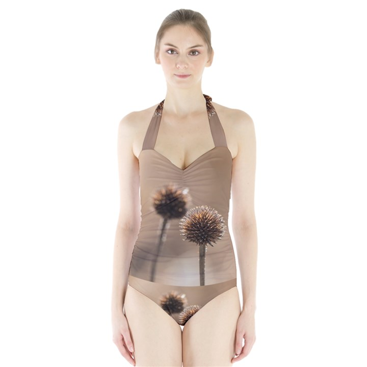 Withered Globe Thistle In Autumn Macro Halter Swimsuit
