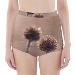 Withered Globe Thistle In Autumn Macro High Waisted Bikini Bottoms