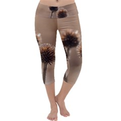 Withered Globe Thistle In Autumn Macro Capri Yoga Leggings