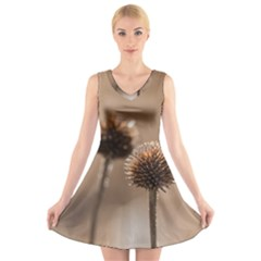 Withered Globe Thistle In Autumn Macro V Neck Sleeveless Skater Dress