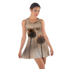 Withered Globe Thistle In Autumn Macro Cotton Racerback Dress