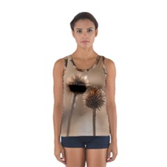 Withered Globe Thistle In Autumn Macro Women s Sport Tank Top