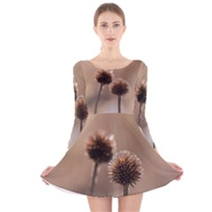 Withered Globe Thistle In Autumn Macro Long Sleeve Velvet Skater Dress